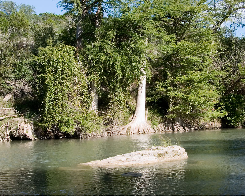 10-06_Guadalupe_State_Park_TX