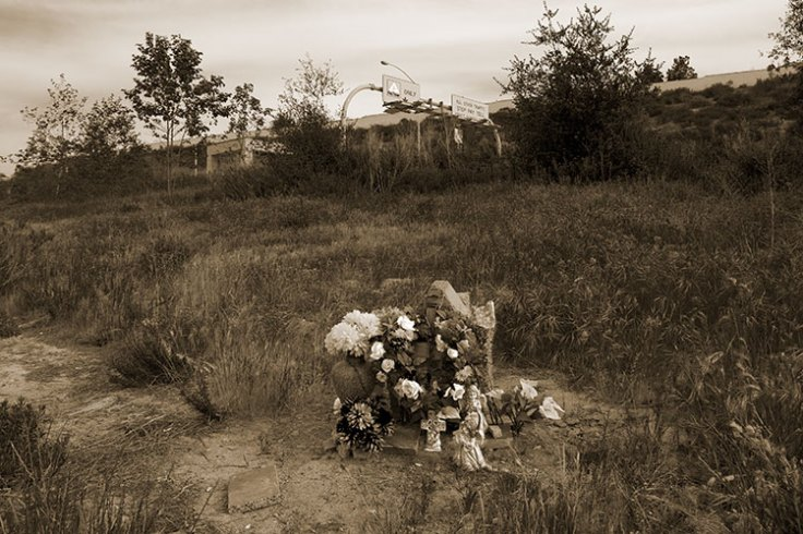 Memorial Shrine241