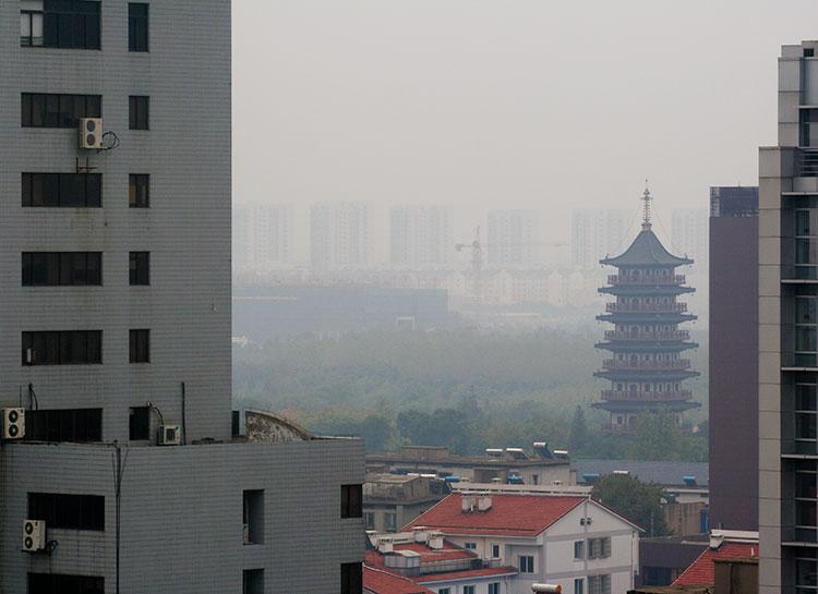 Pagoda and Crane