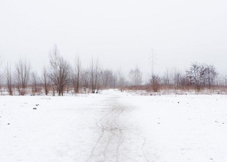 Zima number15