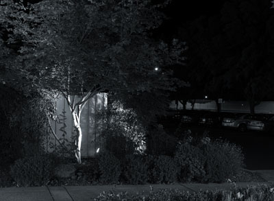 07_Night_Light