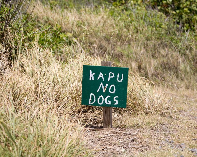 07-04-13_Kapalua_Maui_8922