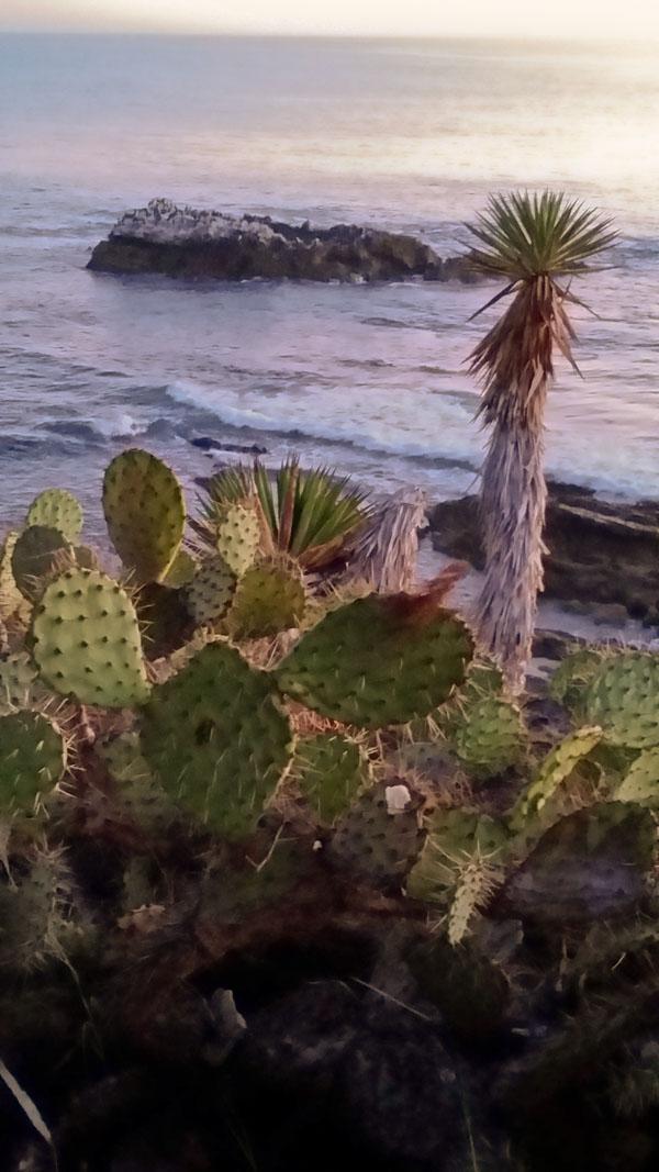 10-22-14 Laguna_Beach_cove