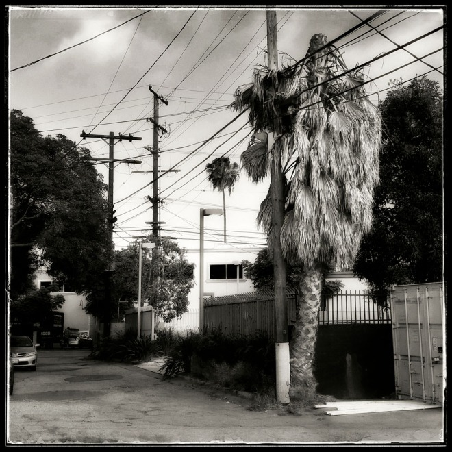 05-13-15_LA_Neighborhood_Series_number_190456