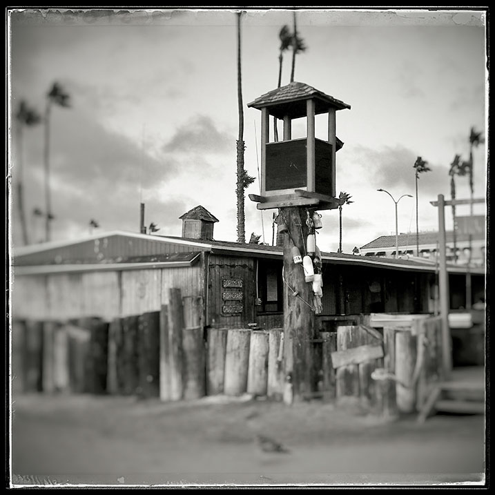 11-15-15_Newport_Beach_dorries_163147-03