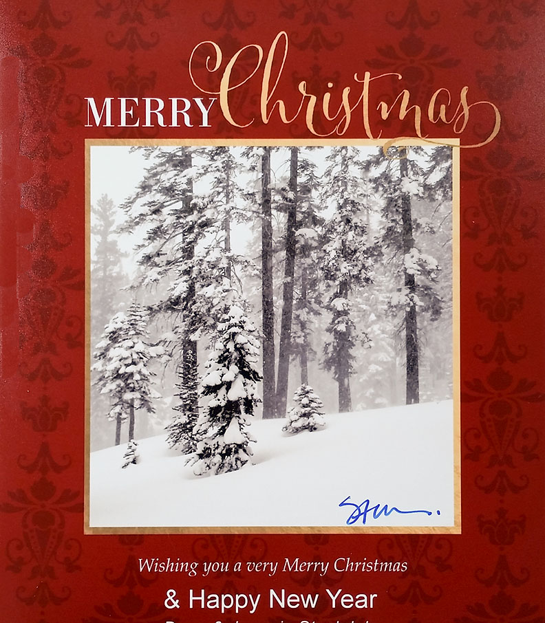 Merry_Christmas_n_Happy_New_Year_card_2017