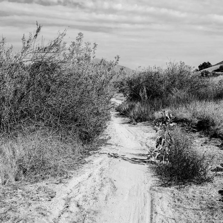 12-16-17_Tijeras_Creek_trail_105353-01_RSM