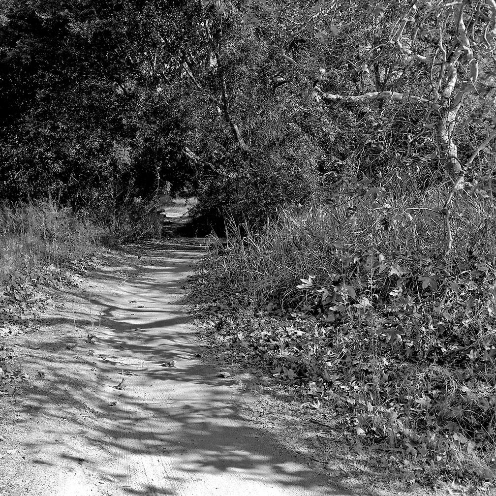 12-16-17_Tijeras_Creek_trail_105848-01_RSM