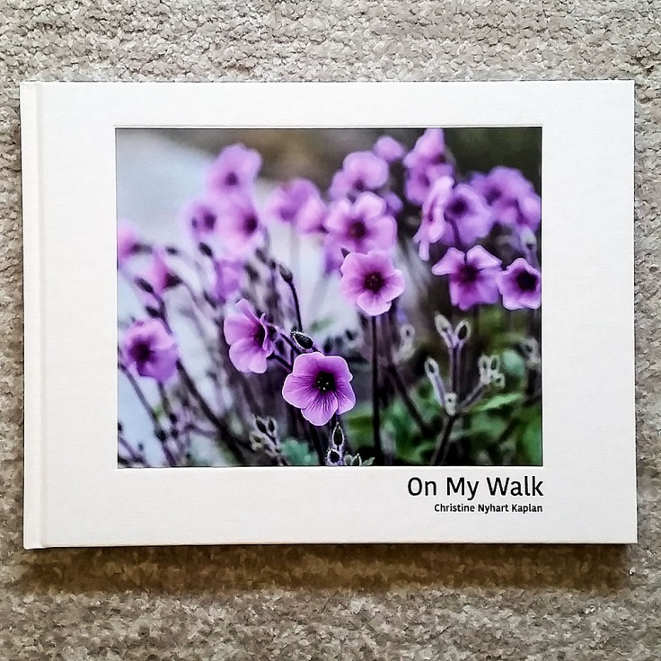 Christine_Nyhart_Kaplan_On-My-Walk_cover