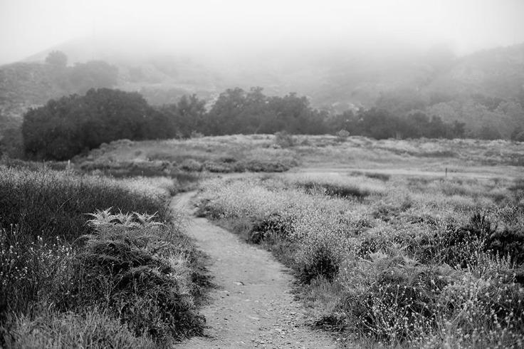 04-29-20 Trabuco Canyon KI6A6984v2